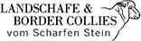 Landschafe & Border Collies vom Scharfen Stein